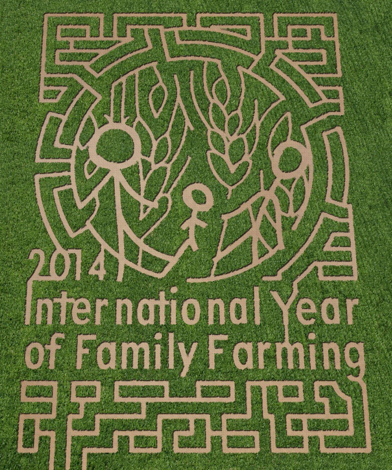 Waldoch Farm Corn Maze