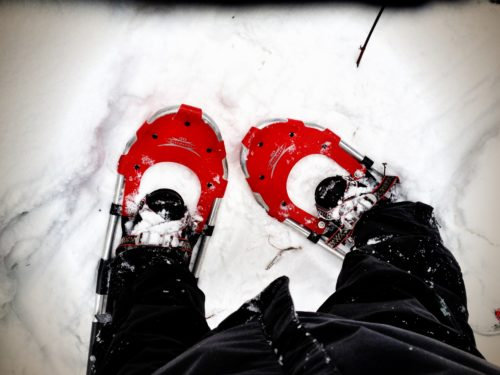 Snowshoeing in Minneapolis