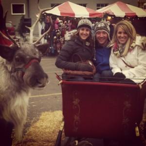 Reindeer and Sleigh at Christkindlemarkt in Excelsior